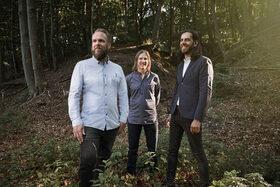 Bild: Emil Brandqvist Trio (S/FIN) - Entering the Woods - präsentiert von  Express Marburg & o-tone music