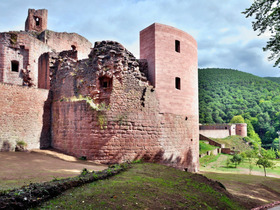 Bild: Schloss- und Festungsruine Hardenburg - Führung