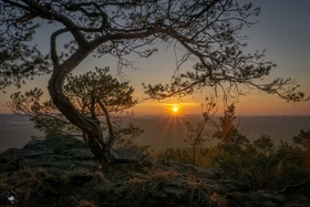 Bild: Mystische Wanderung durch die Hoppelberge