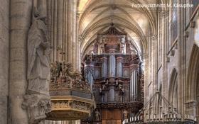 Zwei Schätze der Orgelbaukunst