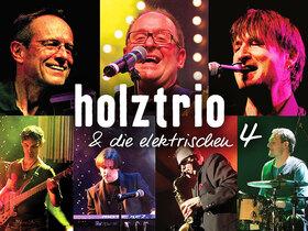 Bild: Holztrio - Summerlounge