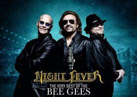 Bild: Night Fever - The very Best of Bee Gees
