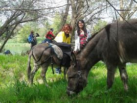 Bild: Eselwanderung & Wildkräuterführung mit Oliver Haury - Eselwanderung & Wildkräuterführung mit Oliver Haury