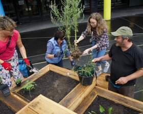 Bild: Ab an die Beete! - Bepflanzungs-Workshop auf dem Vorplatz der Urania