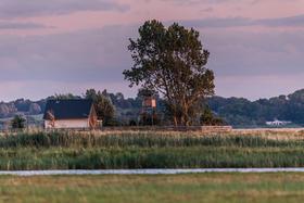 Bild: Radwanderung: Die Vogelschutzinsel Kirr erleben - Radwanderung: Die Vogelschutzinsel Kirr erleben