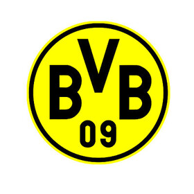 Bild: SV Wehen Wiesbaden - Borussia Dortmund
