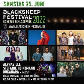 blacksheep Festival 2022 - Samstag (Normalticket + VIP optional)