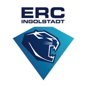 Straubing Tigers - ERC Ingolstadt