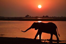 Bild: Namibia - Multivisionsreportage von Thomas Sbampato