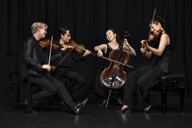 Bild: Marmen Quartett