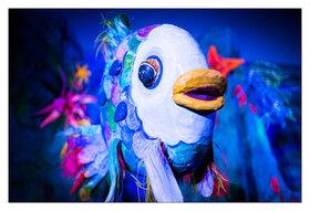 Bild: Der Regenbogenfisch