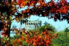 Herbstfest am Park 2021 - FREITAG