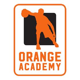 Bild: WHITE WINGS Hanau - Orange Academy Ulm