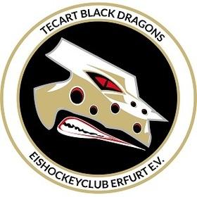 Bild: Hannover Scorpions - TecArt Black Dragons Erfurt
