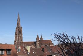 Bild: Öffentliche Stadtführung Freiburg mit Besuch des Münsters