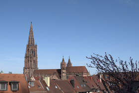 Bild: Öffentliche Stadtführung Freiburg mit Besuch des Münsters - Altstadtführung mit Besuch des Freiburger Münsters