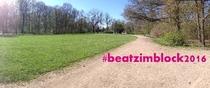 Bild: Beatz im Block 2016 - Early Bird Ticket