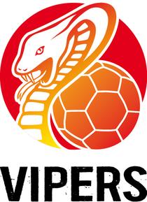 Bild: HSG Blomberg-Lippe - HSG Bad Wildungen-Vipers