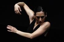 Bild: Real Bodies: Dance On Ensemble - mit Arbeiten von William Forsythe und Matteo Fargion