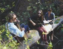 Bild: Sean Koch Trio & Riders Connection