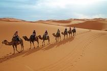 Bild: Marokko - Vom hohen Atlas in die Sahara (Vortrag)