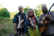 Bild: Trio LarssonMayr - Swedish Folk Music