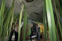 Bild: Eintrittsgutschein  Klimahaus Bremerhaven 8° Ost