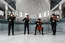 Bild: Binger Meisterkonzerte 2017 - vision string quartet