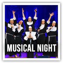 Bild: Musical Night in Concert