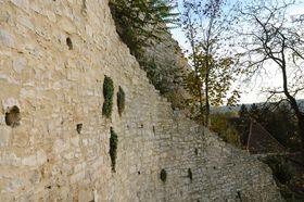 Bild: Stein und Wein unterm Kaltenstein - Stein und Wein unterm Kaltenstein