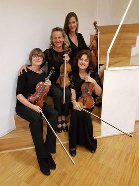 Bild: Ulmer Violinquartett - VielSaitig