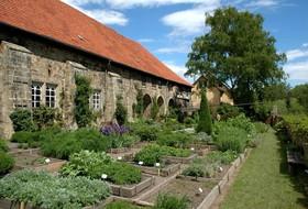 Bild: Sonntagsführung - Auftakt im Garten