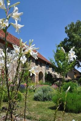 Bild: Sonntagsführung durch die Klostergärten