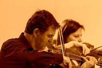 Bild: Bach: Bass-Solokantaten