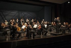 Bild: Lüneburger Symphoniker