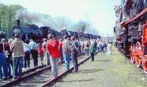 Bild: Zur 24. Dampflok-Parade nach Wolsztyn (PL)