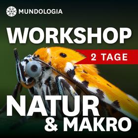 Bild: MUNDOLOGIA-Workshop: Natur- und Makrofotografie