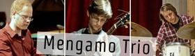Bild: UpBeat Hohenlohe Mengamo Trio in concert
