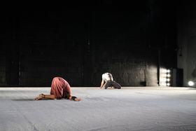 Bild: headless - von backsteinhaus produktion / TANZ