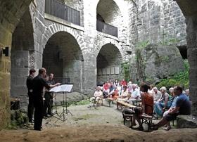 Bild: Alphorn-Konzert - mit Heinz della Torre (Schweiz)