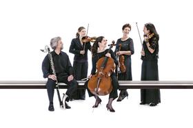 Bild: Kammermusik | Klarinette & Streicher