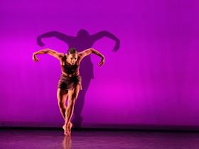 Bild: Shadows in Motion