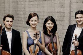 Bild: Minetti-Quartett mit Thorsten Johanns
