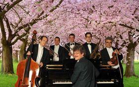 Bild: Mandelblüten-Frühlings-Konzert