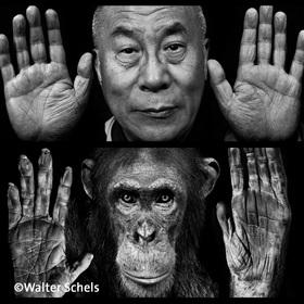 Bild: Fotopodium »Hände«