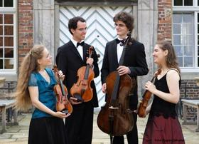 Bild: Klassik im Ring - Ten Hagen Quartett
