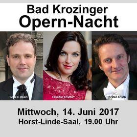 Bild: Bad Krozinger Opernnacht