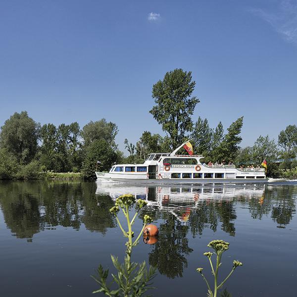 Panoramatour ins Bergische Land - Linie +