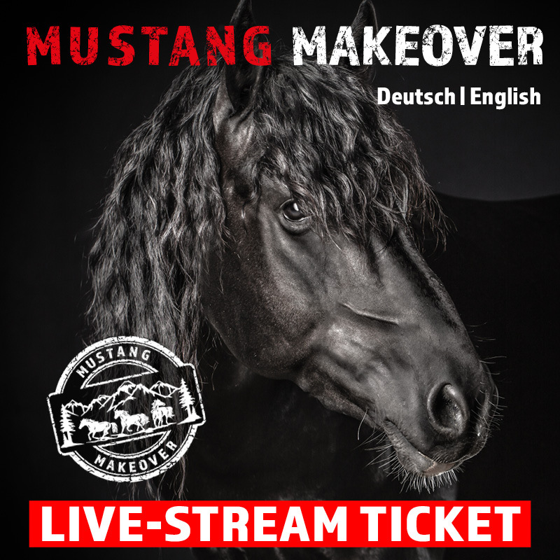 LIVE-Stream Ticket Sonntag - MUSTANG MAKEOVER 2021
