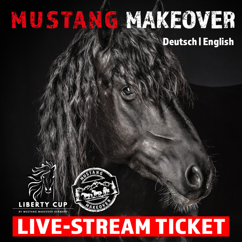 LIVE-Stream Ticket SA+SO MUSTANG MAKEOVER 2021